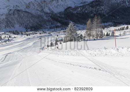 Winter Road With The Traces Of The Skies