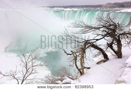 Living on the Edge of Niagara