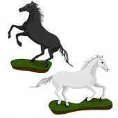 stock photo of black horse  - White and black horse in motion on small islands - JPG