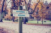 pic of opposites  - Rustic wooden sign in an autumn park with the words Autumn  - JPG