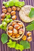 picture of hazelnut  - hazelnuts on a table - JPG
