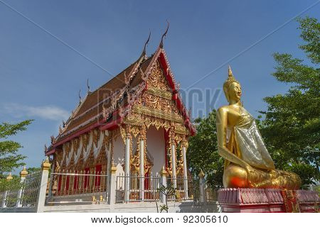 Temple with tree and buddha statue