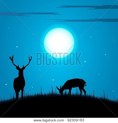 Deer And Doe During The Full Moon Background