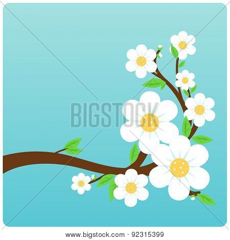 Blossoming tree branch.