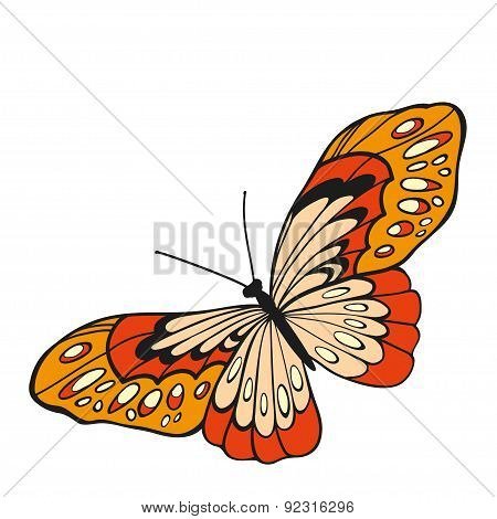 Red Butterfly With Open Wings In A Top View