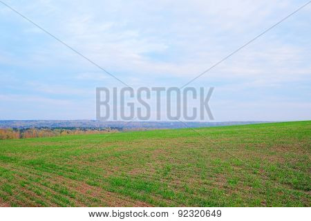 image of a field