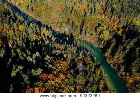 Pristine River Meandering Through Forested Landscape