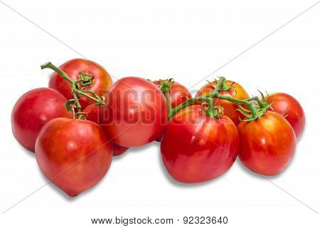 Bunches Of Tomatoes