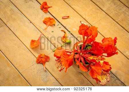 Orange Flowers On Old Wooden Table.