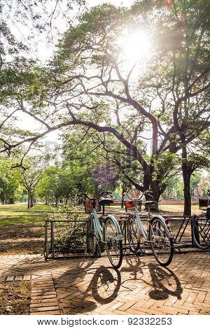 Bicycles in park