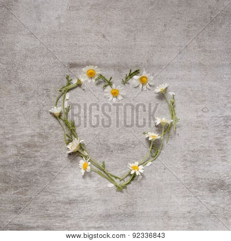 Daisy Love Symbol On Old Wooden Background