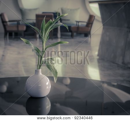 Leaf Plant In Jar On Glass Table