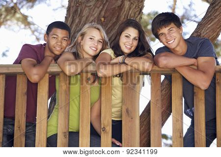 Group Of Teenage Friends In Treehouse