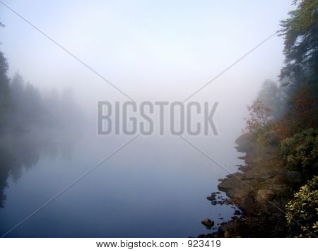 morning fog lifting off the lake and filtering the trees