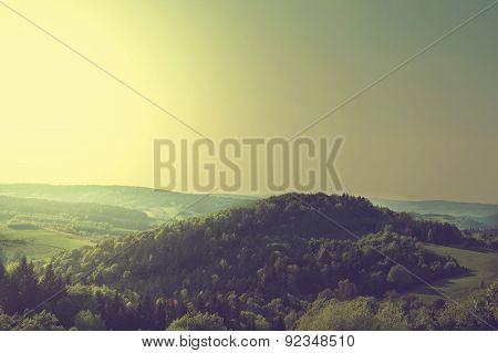 Green Scenery Landscape