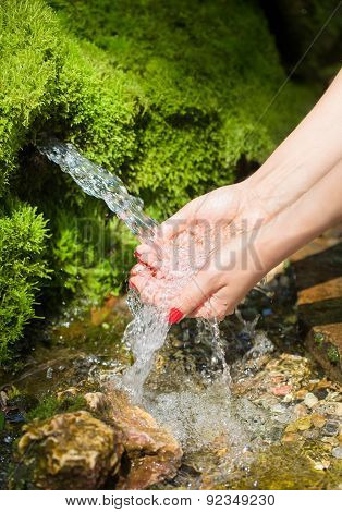 Spring Water Flows In Female Hands