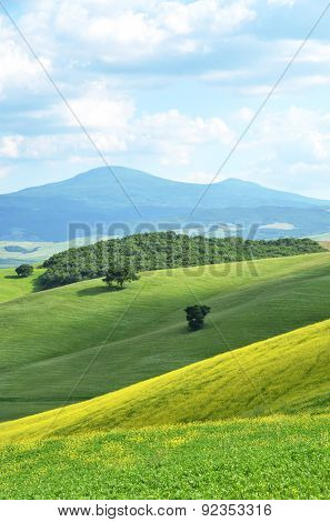 Typical Tuscan landscape near Pienza, Italy