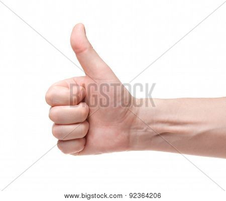 Ok. Gesture Of The Hand On White Background