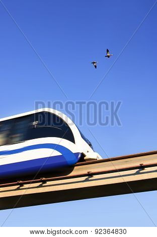 Train Overtakes Flying Birds. Symbol Travel. Monorail. Moscow. Russia