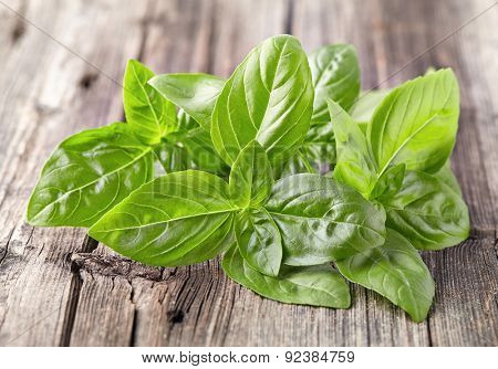 Basil leaves on a wooden background