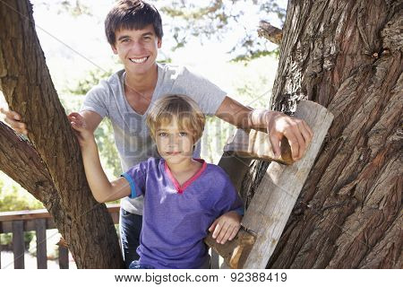 Teenage Boy And Brother Playing In Tree House Together