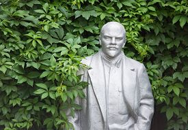 picture of lenin  - Old statue of Lenin looks out from the bushes - JPG