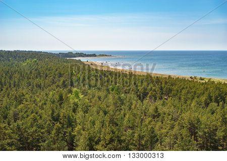 Overlook on coastline and coniferous forest of Hiiumaa island Estonia