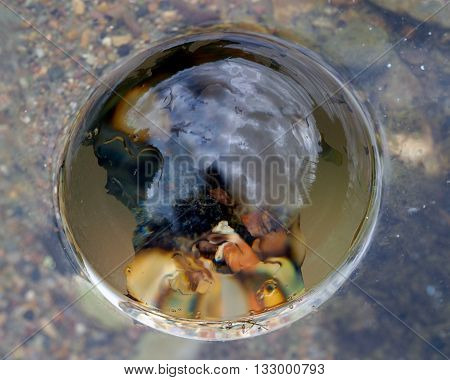 The bubble on water. Through bladder stones, reflection. The concept - the idea, the purity of water, pollution, drought