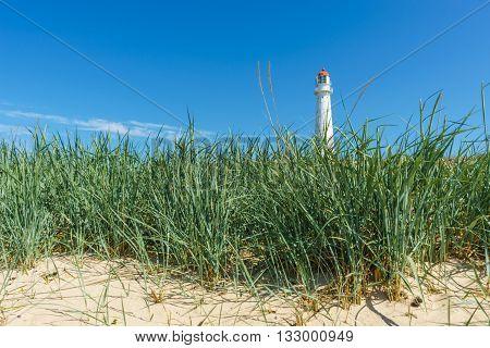 View on Tahkuna lighthouse through sedge grass Hiiumaa island Estonia