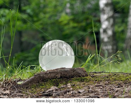 White, matt ball in the woods on the grass. Glass - a material, concepts and themes, concepts, environment, nature, ecology, drought