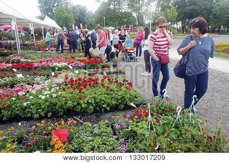Flora Art In Zagreb