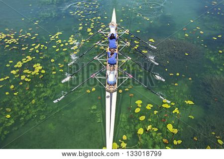 Four women rowing on the tranquil lake