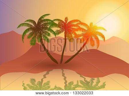Vector illustration. Oasis in the desert at sunset.