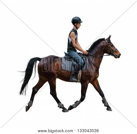 man riding on a horse isolated white background