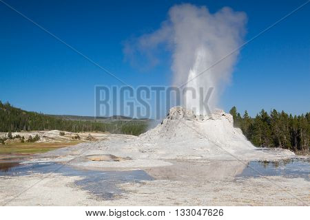 Gayser eruption in Castle Geyser in the Yellowstone National Park