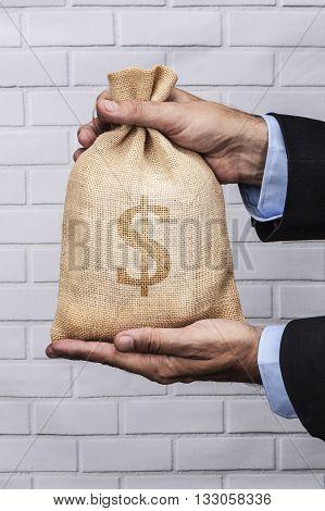Big Money Sack Back Dollar
