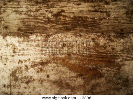 Texture Wood Grain