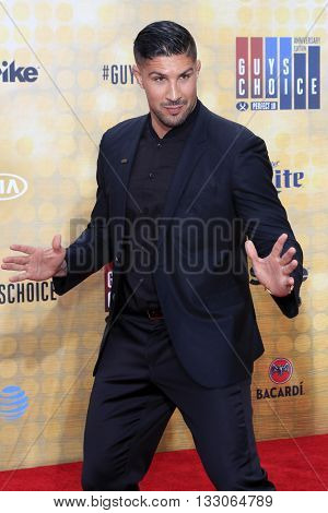 LOS ANGELES - JUN 4:  Brendan Schaub at the 10th Annual Guys Choice Awards at the Sony Pictures Studios on June 4, 2016 in Culver City, CA
