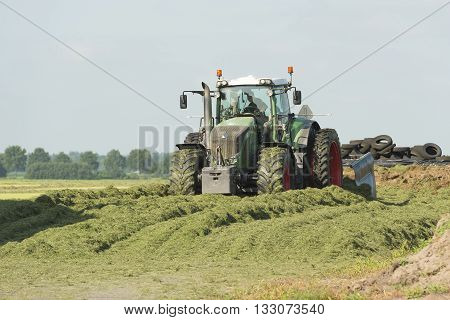 silage with a large tractor in the summer
