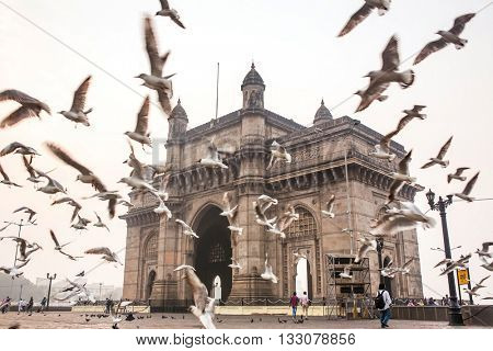 Mumbai, India - February 27, 2016: Seagulls fly in front of Gateway of India in Mumbai