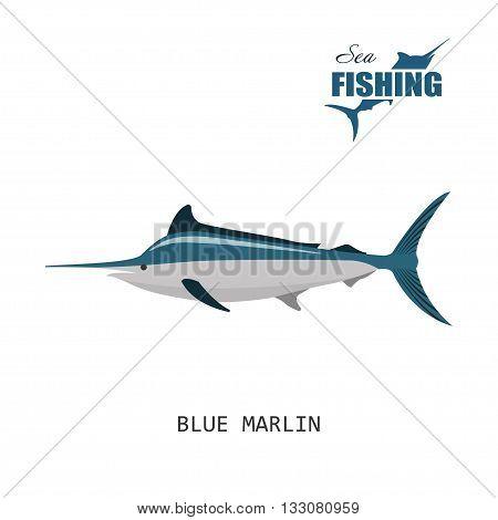 Fish: blue marlin. Sea fishing. Vector illustration