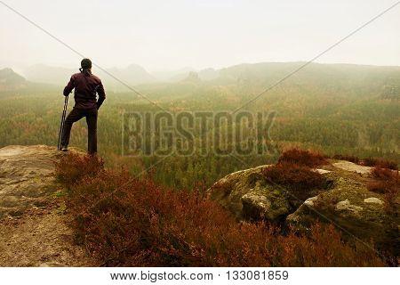 Man Hiker In Dark Sportswear And Poles Stand On Mountain Peak Rock. Red Heather Bushes
