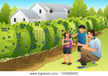 A vector illustration happy kids harvesting blueberry together with their father