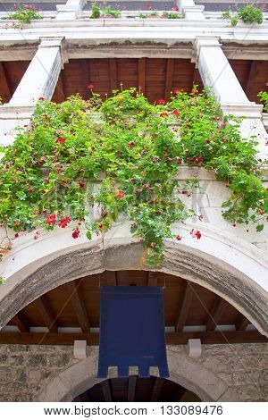 Window loggia balcony on old europe castle architecture full of green plant and flowers