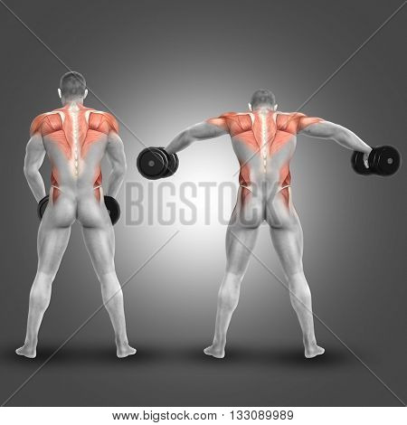 3D render of a male figure doing dumbbell standing lateral raise with muscles used highlighted