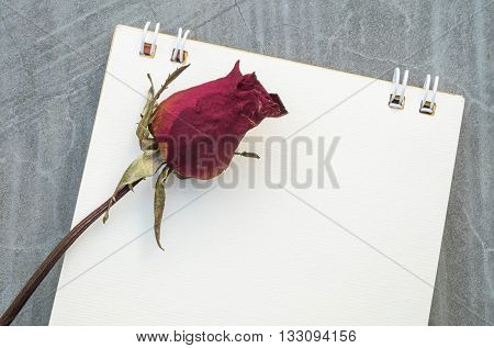 Closeup dried red rose with white note paper on concrete floor texture background
