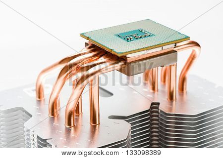 Modern processor on plate the cooler. Cooling concept on white background