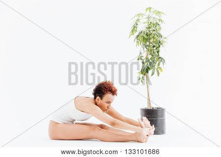 Pacified african american young woman stretching and practicing yoga near small tree in pot over white background