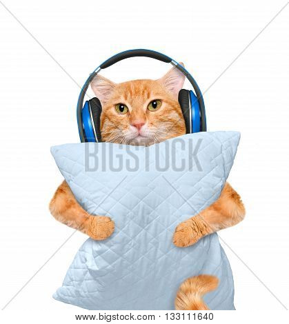 Sleepy cat in a headphones with a pillow.  Isolated on white.