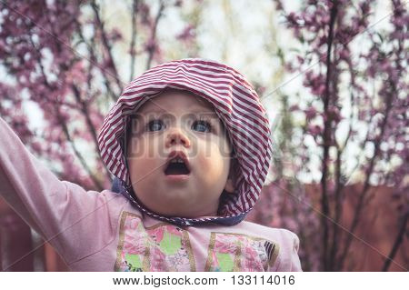 Admiring cute baby girl in pink clothes walking among blossoming trees in the garden   with surprised face